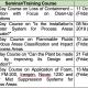 Training Course/Seminar programmes 2019-2020